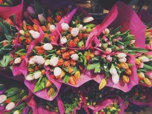 virtuelle blumenhaendler in 360 grad bunte tulpen